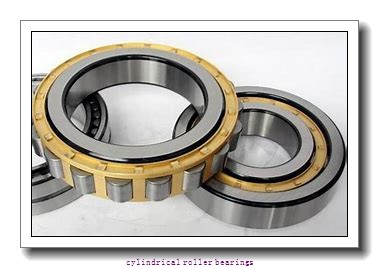 4.724 Inch | 120 Millimeter x 10.236 Inch | 260 Millimeter x 2.165 Inch | 55 Millimeter  CONSOLIDATED BEARING N-324E  Cylindrical Roller Bearings