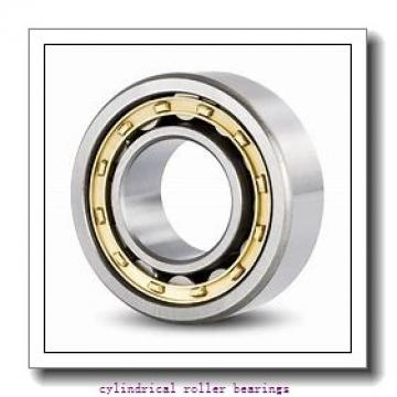 4.331 Inch | 110 Millimeter x 6.693 Inch | 170 Millimeter x 1.102 Inch | 28 Millimeter  CONSOLIDATED BEARING NU-1022 M P/5 C/2  Cylindrical Roller Bearings