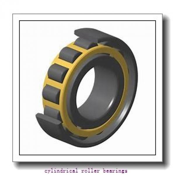 2.559 Inch | 65 Millimeter x 5.512 Inch | 140 Millimeter x 1.299 Inch | 33 Millimeter  CONSOLIDATED BEARING N-313E  Cylindrical Roller Bearings #1 image